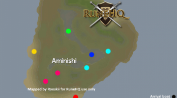 Runescape Guide - Aminishi Area rs07 gold