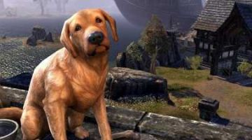 Elder Scrolls Online Players Have 24 Hours to Claim Free Pets for National Dog Day eso gold farming